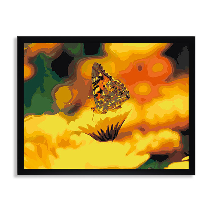 Раскраска по номерам Бабочка и ромашка / Цветы / Каталог