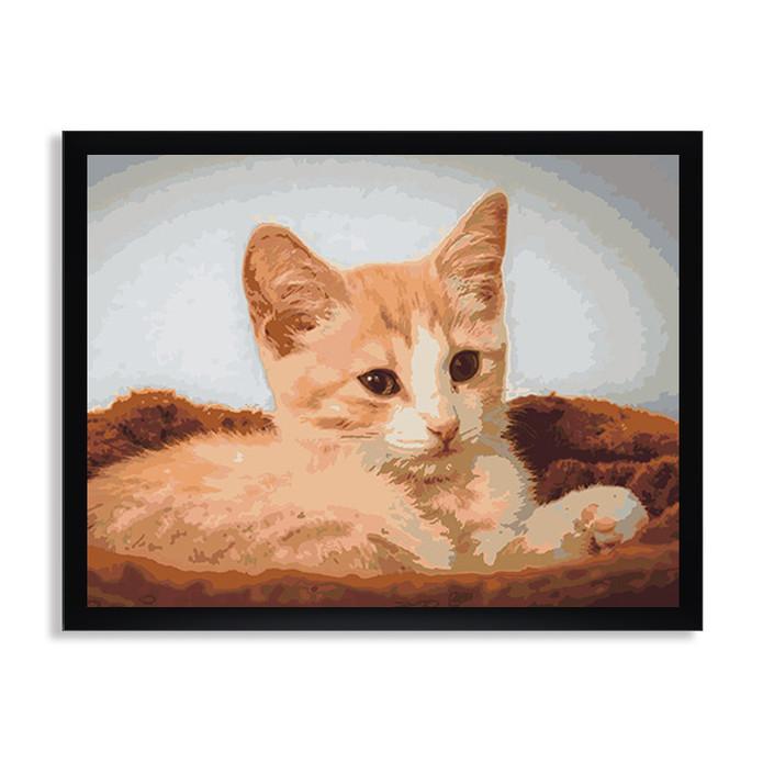 Раскраска по номерам Котенок в корзинке / Кошки / Животный мир