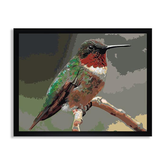 Раскраска по номерам Птичка колибри / Птицы / Животный мир